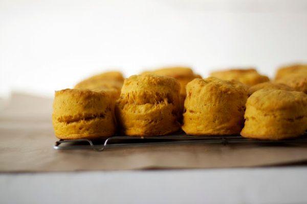 """<strong>Get the <a href=""""http://alwayswithbutter.blogspot.com/2011/04/pumpkin-biscuits.html"""" target=""""_blank"""">Pumpkin Biscuits"""