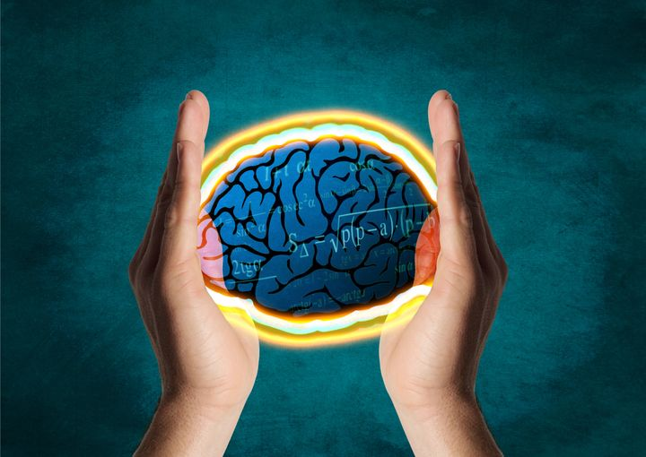 brain between hands
