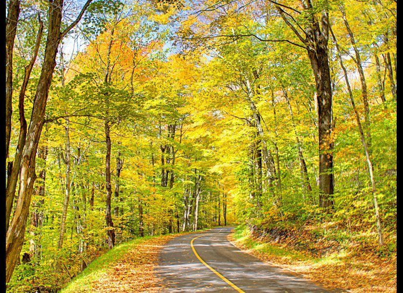 "<a href=""http://www.departures.com/slideshows/best-fall-drives/2"" target=""_hplink"">See More Perfect Fall Drives Here</a><br><"