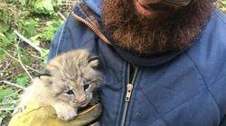 이 남자는 자신이 숲에서 새끼 고양이를 구조한 줄