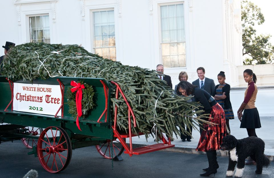 Melania Trump S Red Christmas Trees Conjure Handmaid S Tale For