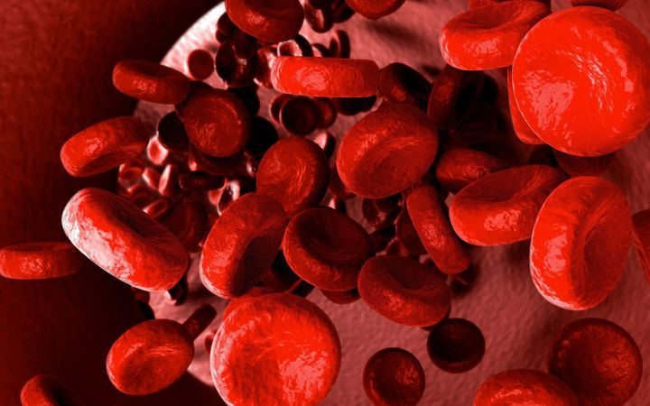 streaming blood cells inside of ...