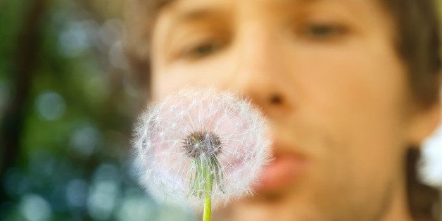 dandelion and man on background ...
