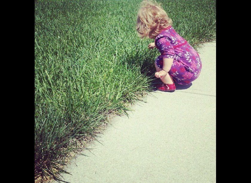 "This was one of her first documented squats. On Instagram it was titled ""Vivi's dandelion picking service. A penny a pop!"""