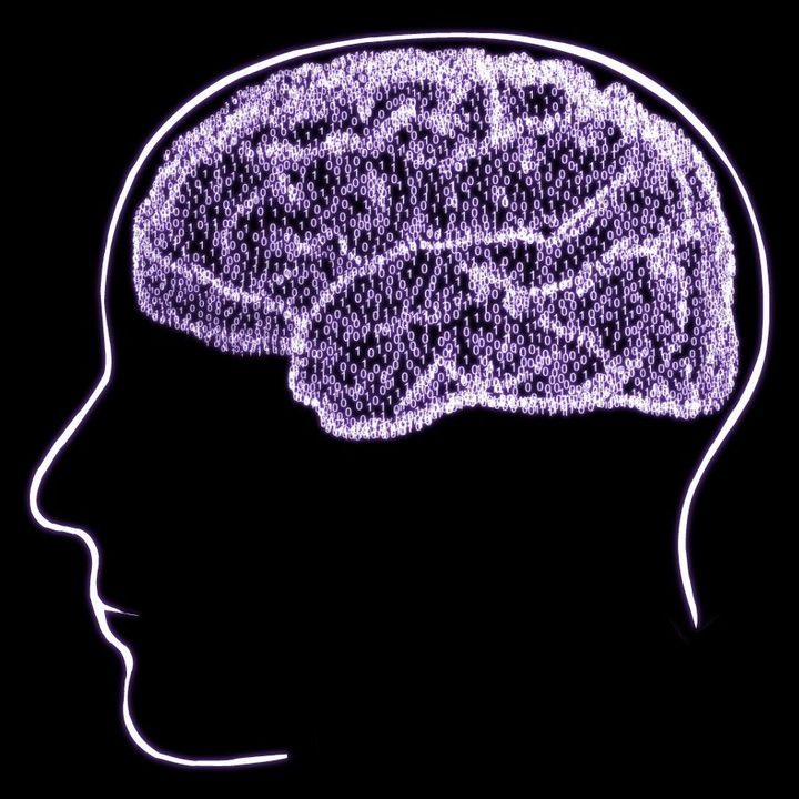 Neurosciences. Here are some images related to neurosciences.  Some have been used for conferences. Copyright (c) 2003 Nicolas P. Rougier  ...
