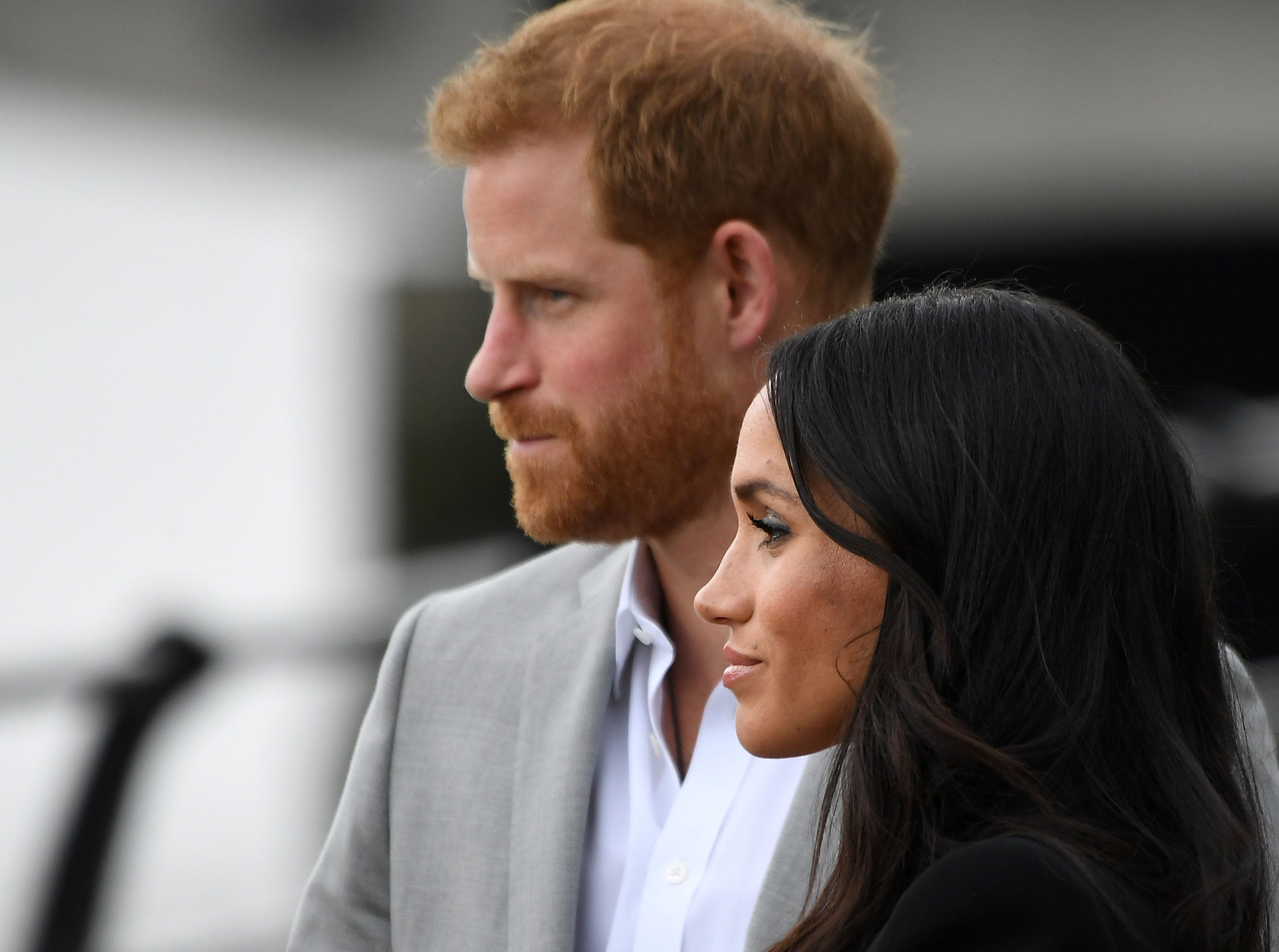Royals: Stress bei Meghan und Harry – Meghans Hund soll den neuen Hund