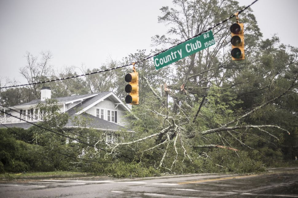 A fallen tree lies in front of a house in Wilmington, North Carolina.