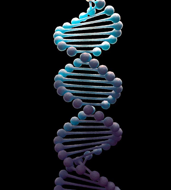 DNA molecule, computer artwork.