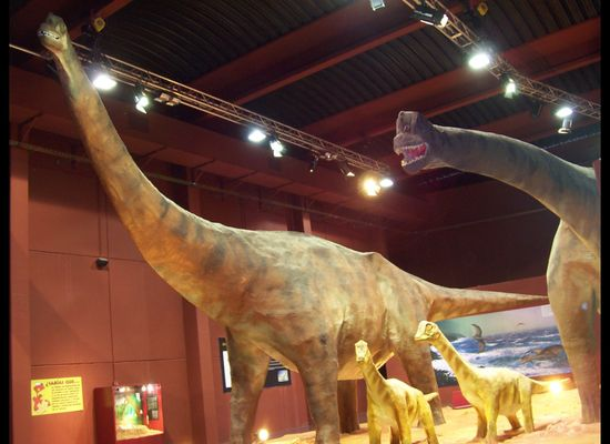 A 1,945 Mile Dinosaur Trip Through Northern Spain | HuffPost