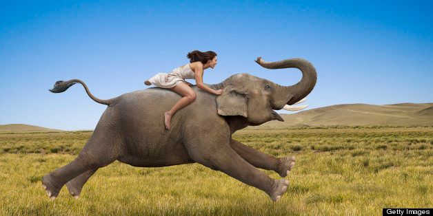 A woman rides a galloping elephant, bareback, in a photo depicting freedom, success and possibilities.