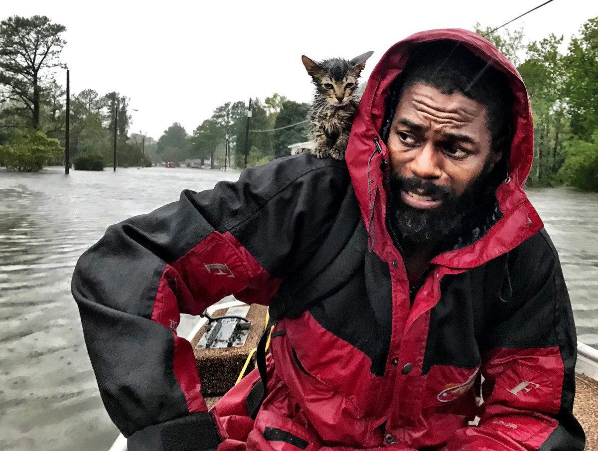 """Robert Simmons Jr. y su gatito """"Survivor"""" (Sobreviviente) luego de ser rescatados de las crecidas que dejó el paso del huracán Florence en New Bern, Carolina del Norte, el viernes 14 de septiembre de 2018. (Andrew Carter/The News & Observer vía AP)"""