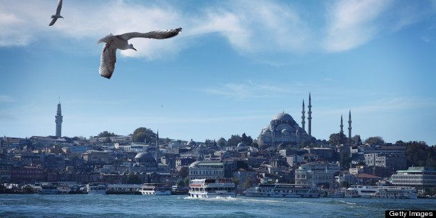 Seagulls Flying Above Bosporus Strait in Istanbul, The Suleiman's Mosque on the Right