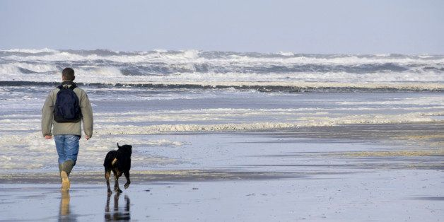 Man and his dog walking on the beach
