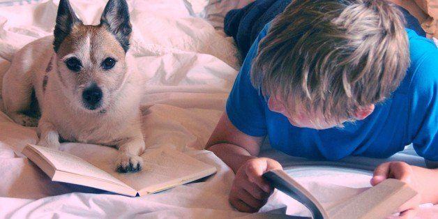 A boy and a dog both reading books on a bed