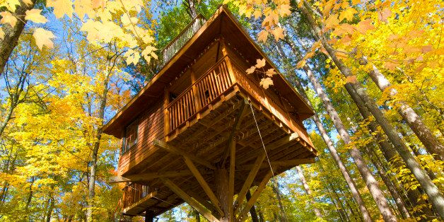 Tree house in autumn colored forest