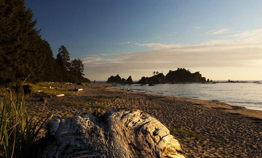 Toleak Beach, Olympic National Park, Washington.   -Angela Anderson