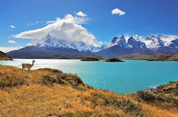 It takes a few long plane rides and a bumpy transfer on mostly dirt roads to get to Pehoe Lake in Chilean Patagonia, but the