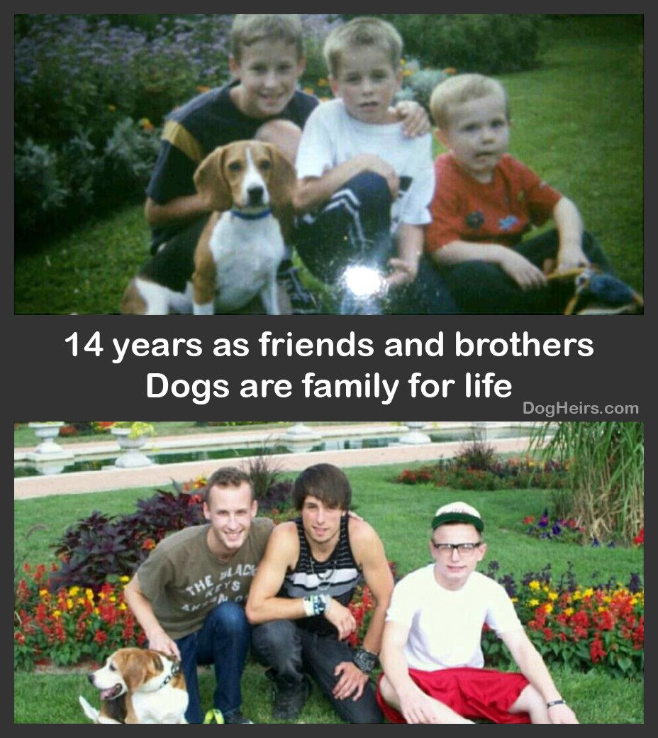 """14 years as friends and brothers :)"" - Submitted by Cathy Donges Dashley"