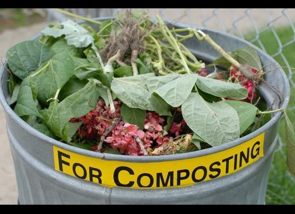 Into planet Earth? Want to help out your garden? Try using red wine in your compost to activate the bacteria and give your ga
