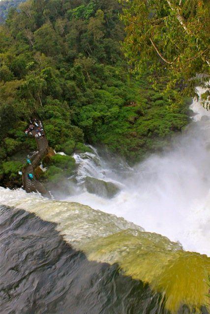 The Argentina side of Iguazu Falls.   --Miranda Santiago, spendyourdays.com
