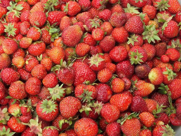 It's the smell that happens when you leave strawberries out overnight, in a hot kitchen. They get this overwhelming hot straw