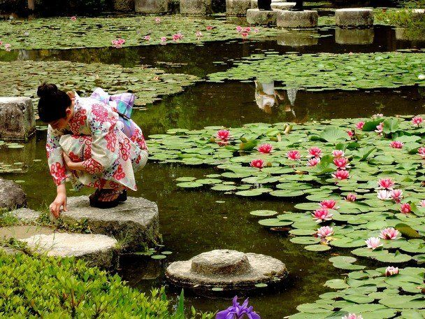 Watching the baby Koi. (Peter Davis/National Geographic Traveler Photo Contest)  <strong>Location:</strong> Heian Temple, Kyo