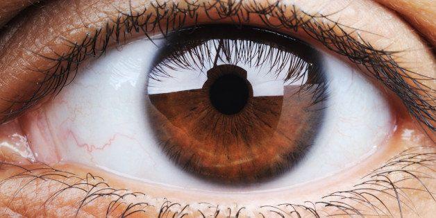 closeup of human eye  macro mode