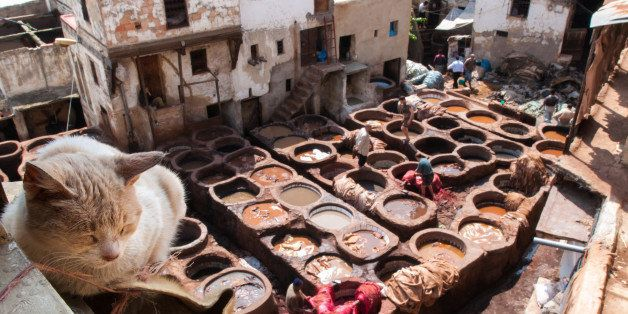 Morocco Hits All the Right Notes for Travelers