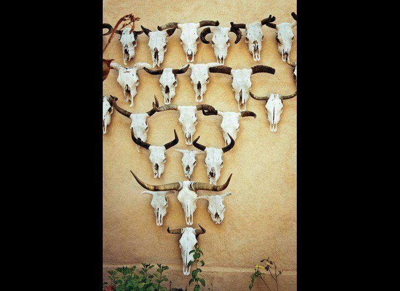 Cow skulls embellish an adobe wall at the Gage Hotel in Marathon.