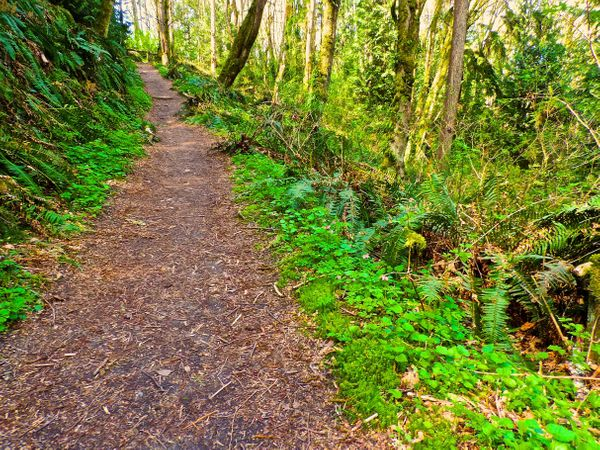 """Head to the hills! Thirty minutes in nearby public parkland can shed <a href=""""http://www.self.com/calculatorsprograms/calcula"""