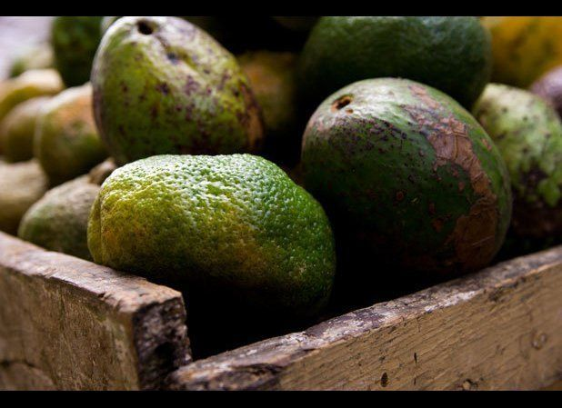 Want guacamole on that? So do a lot of other people: Chipotle uses 100,000 avocadoes per day, some contributed by a farm that