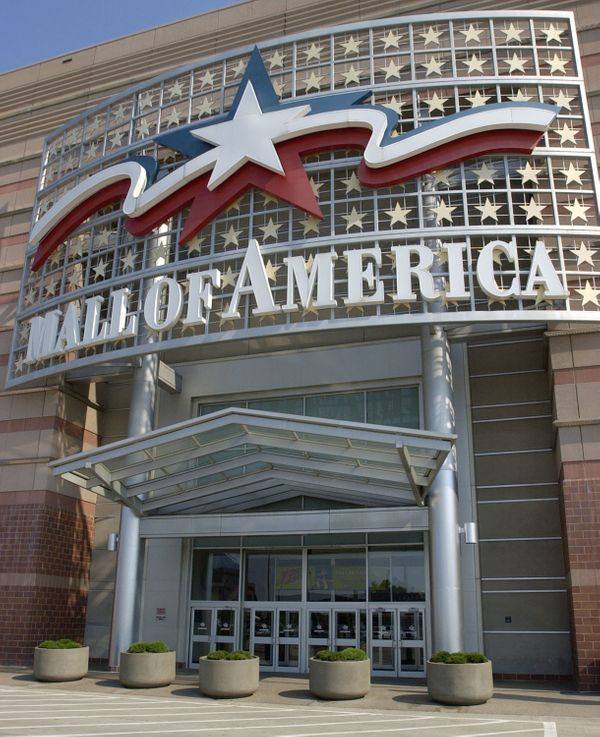 I love the Mall -- the big, green, open area in the middle of my Washington, D.C., hometown, that is. The Mall of America see