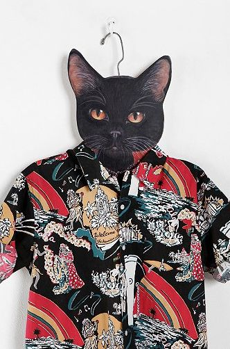 Nothing beats a cat wearing a Hawaiian... except maybe (maybe) a cat wearing a beanie.