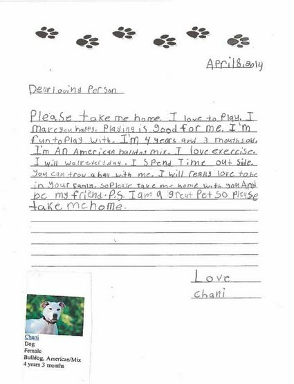 <em>Dear Loving Person <br> Please take me home. I love to play. I make you happy. Playing is good for me. I'm fun to play wi