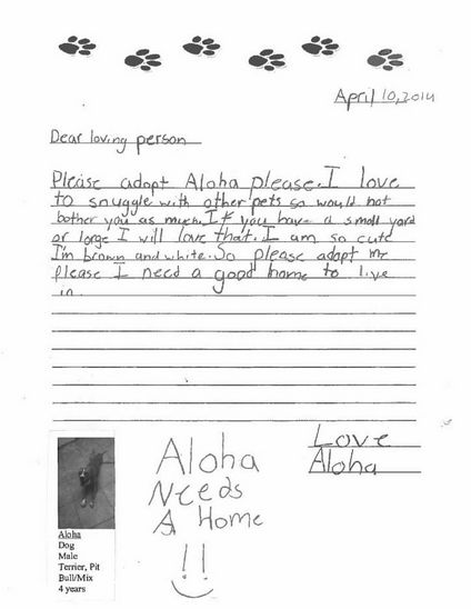 <em>Dear loving person <br> Please adopt Aloha please. I love to snuggle with other pets so would not bother you as much. If
