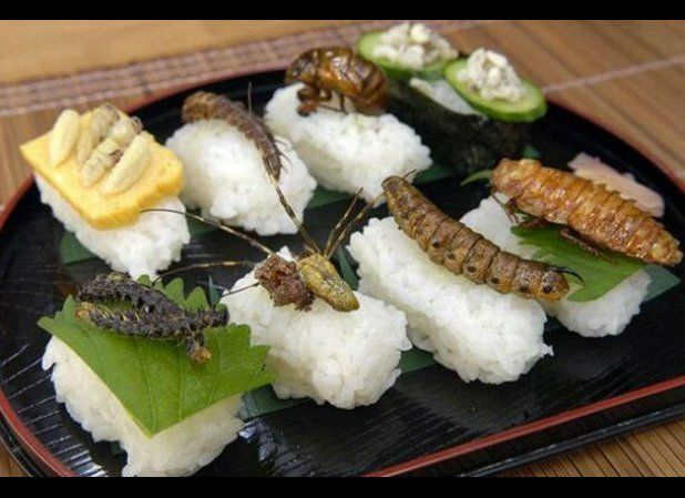 The Japanese have long known about the incredible health benefits of eating delicious insects. Rumor has it that Japanese emp