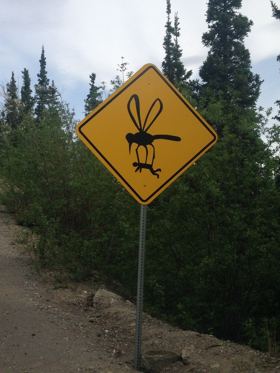 Alaskan Road Signs Guide Drivers Past Mosquito Abduction Falling