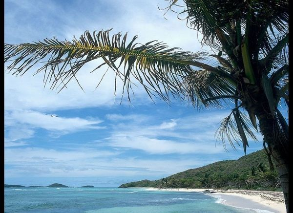 <strong>GRENADINES 93.9</strong>  OUR FAVORITE: Saltwhistle Bay, Mayreau  THE LOOK: Two perfect strands of sand, one fac