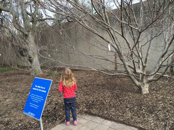 <strong>In April, Annabelle visited Yoko Ono's Wish Tree at the Smithsonian in Washington D.C. Her wish? A rainbow unicorn, o