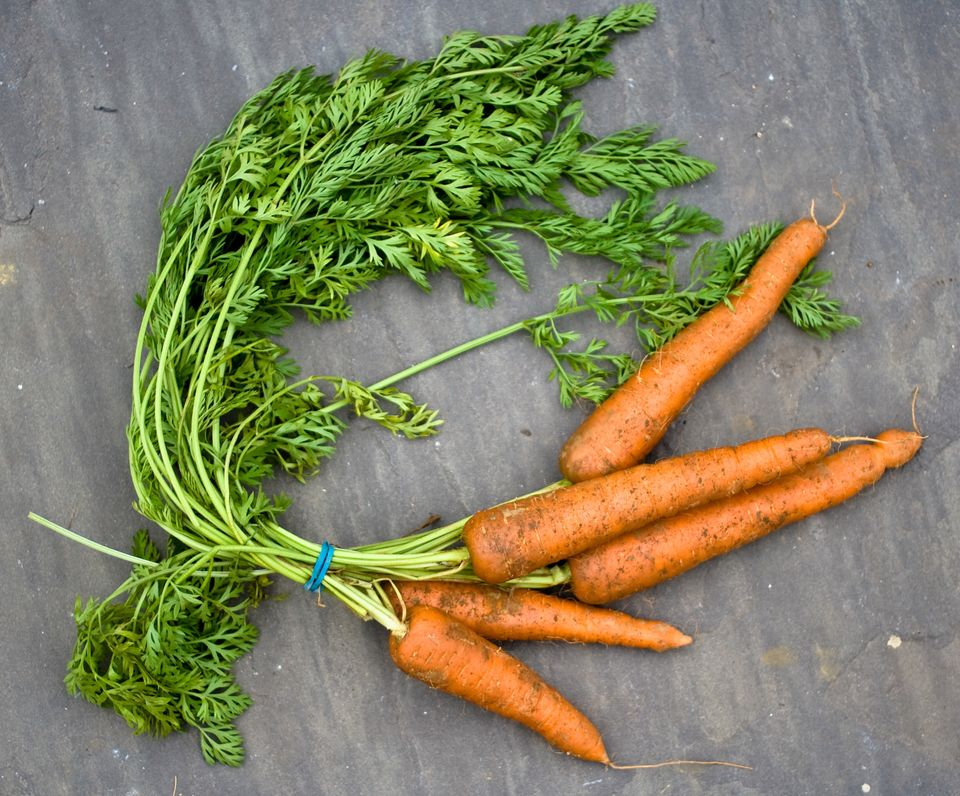 raw magic super foods for super people