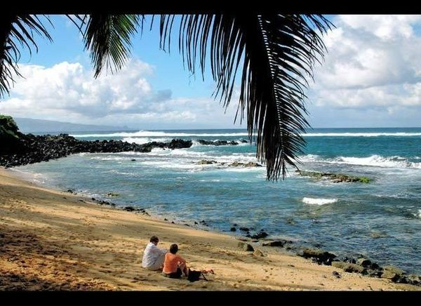 <em> Photo Credit: An Hawaiian Holiday by Attribution License</em>