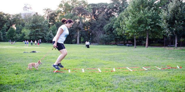 We Tried It: Go Fetch Run   HuffPost Life