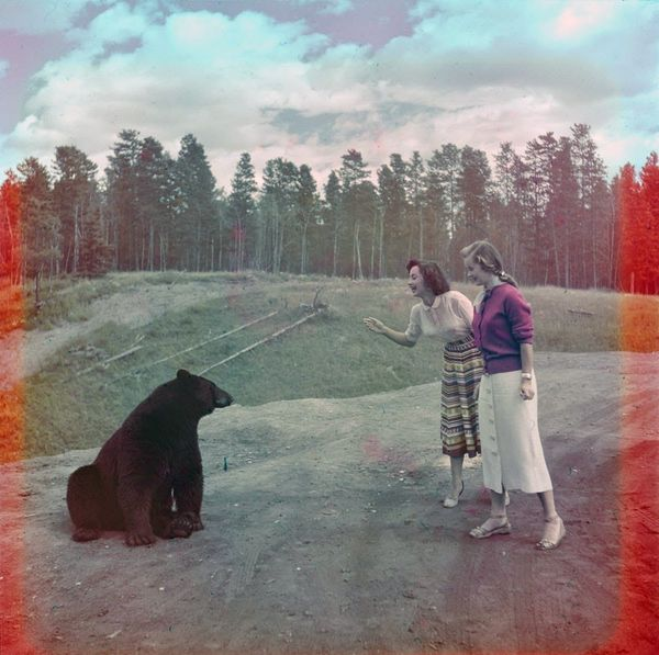 "Two women feeding a black bear at Nuisance Grands, Banff National Park.  <a href=""http://collectionscanada.gc.ca/pam_archives"