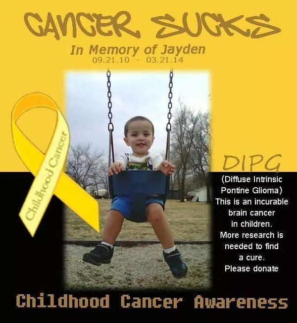 <em><strong>One week from diagnosis</strong></em> of DIPG Jayden passed at 3 1/2 years old. -- Angela Fogg Borrell