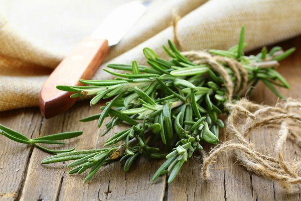 """""""There's rosemary, for remembrance,"""" wrote Shakespeare, and with its sharp, bright scent, the herb is hard to forget. Like mo"""