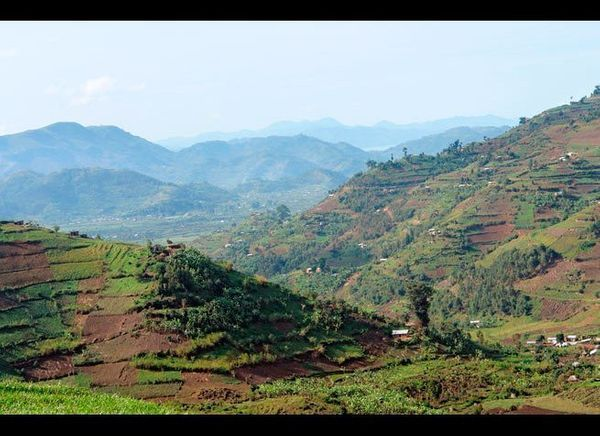 <em>Photo Credit: PRILL / Shutterstock</em>