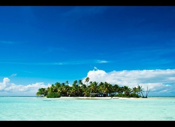 <em>Photo Credit: iPics / Shutterstock</em>
