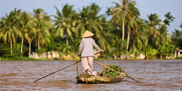 The Mekong Delta is an area in Southwestern Vietnam where the Mekong River dumps into the sea. Visitors can go to Can Tho, th