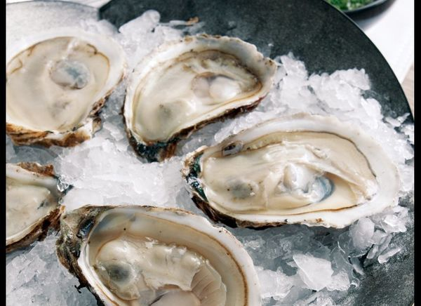 On the half shell, with mignonette sauce, is a classic way to serve oysters. The sauce is a combination of champagne vinegar,