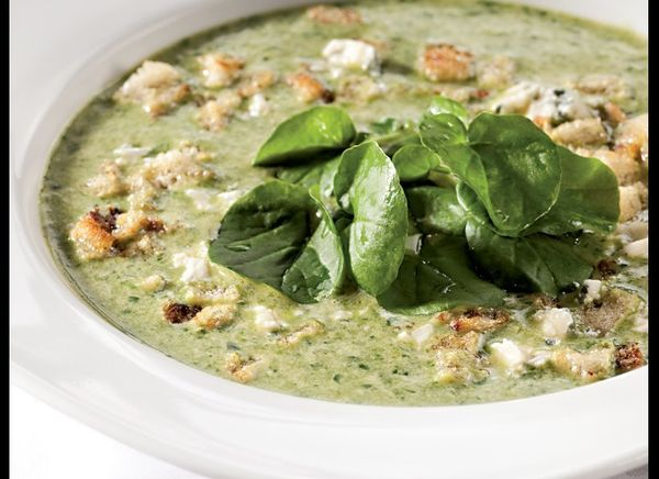This soup is a spicy pureed green soup. It gets its kick from a hint of horseradish and blue cheese, and is lightened up with